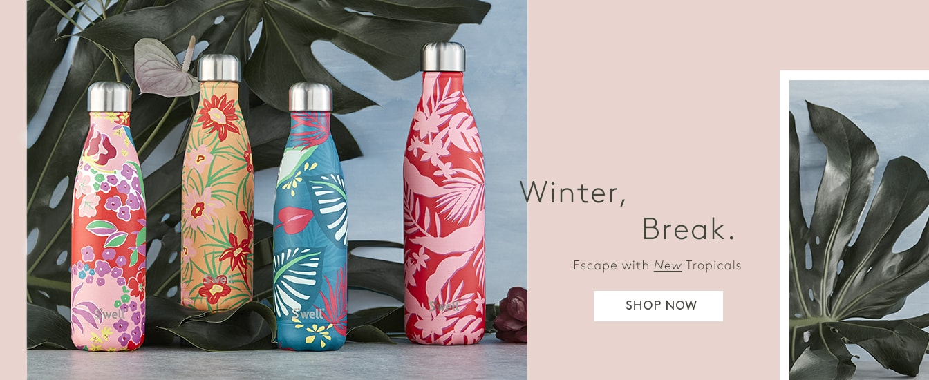 Winter, Break: Escape with New Tropicals